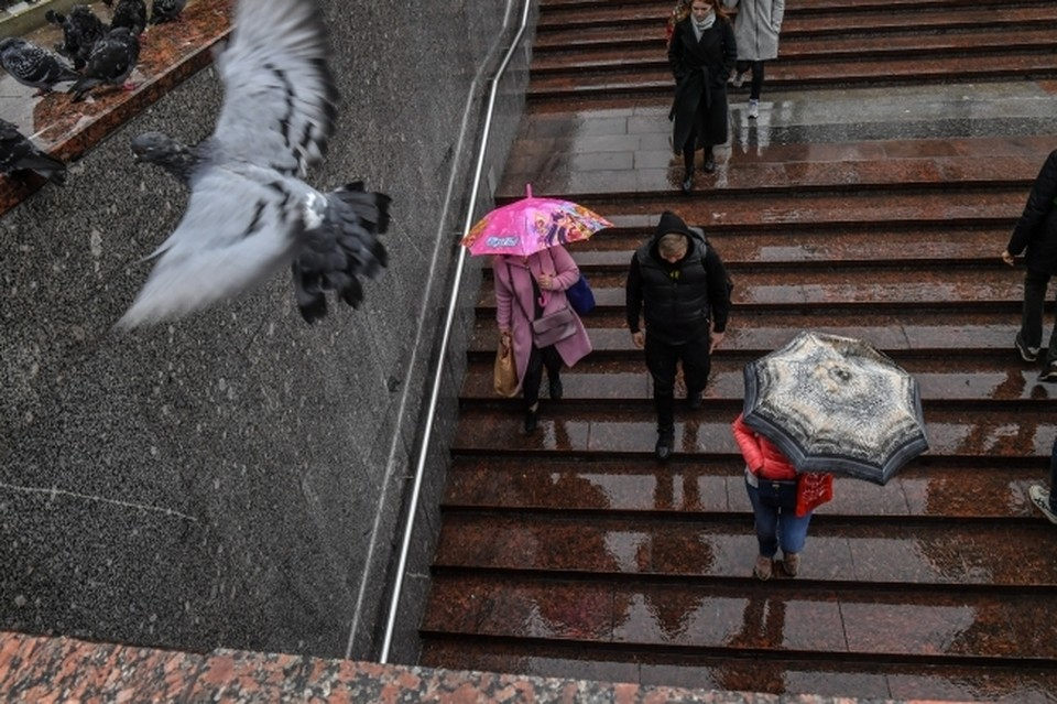 Погода в Нижнем Новгороде в выходные 4-5 сентября: Холодно и дождливо