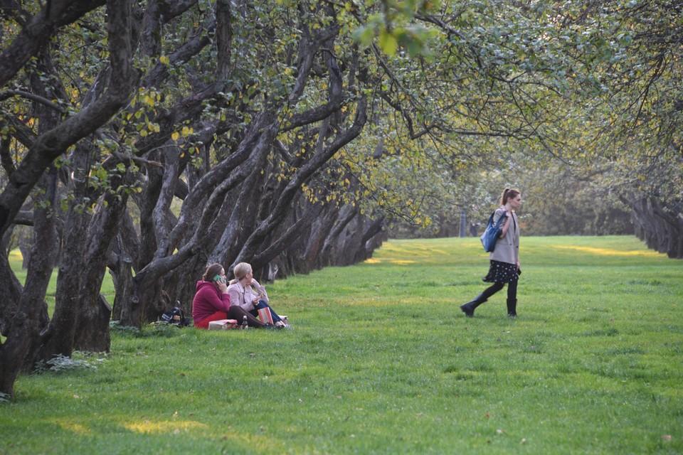 Выбирайтесь на выходные в парки - погода будет замечательная.