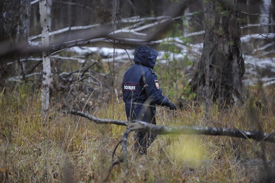 Поисками пропавшего мужчины занимаются спасатели, полицейские и волонтеры