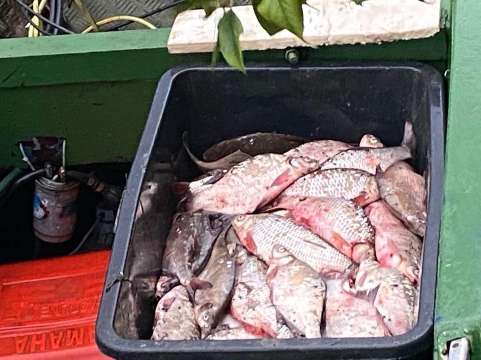 У задержанных изъяли весь улов - 140 рыб.