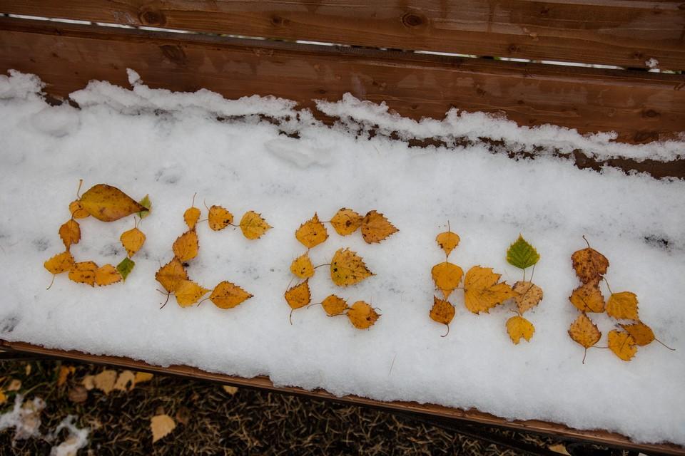 На севере Омской области обещают первый снег уже на этой неделе.