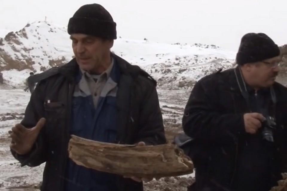 На кузбасском разрезе нашли бивень мамонта